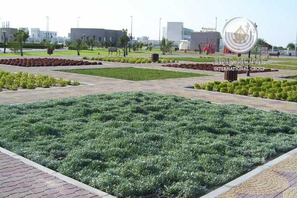 Amazing Farm In Al Rahba,abu Dhabi (Frm_79)